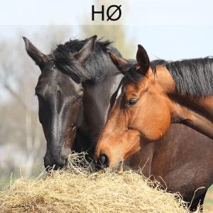 Grovfoderanalyse Hø