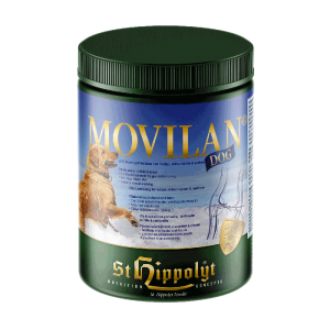 ST. Hippolyt Movilan DOG
