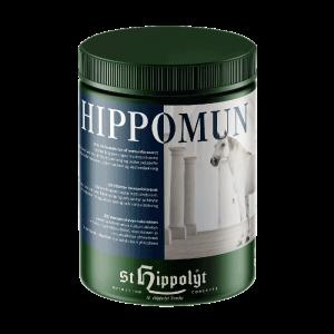 St. Hippolyt Hippomun