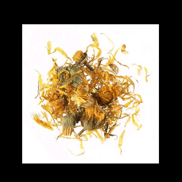 AGROBS Morgenfrueblomsterblade foder
