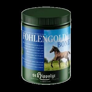 St. Hippolyt Fohlengold Bone