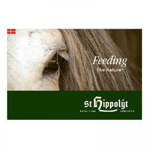 St. Hippolyt katalog Light DK